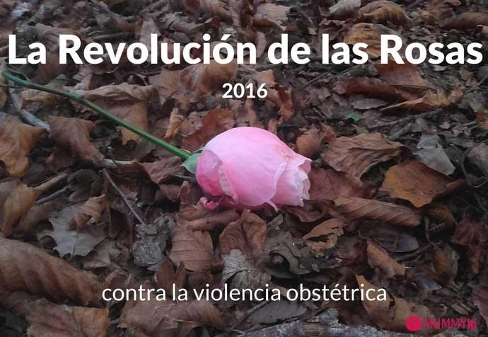 Sobre la violencia obstétrica. La Revolución de las Rosas 25 de Noviembre de 2016