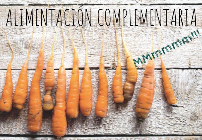 Introducción a la alimentación complementaria.